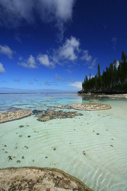 Plage De Cengeite Plage Caledonie Et Ile Paradisiaque