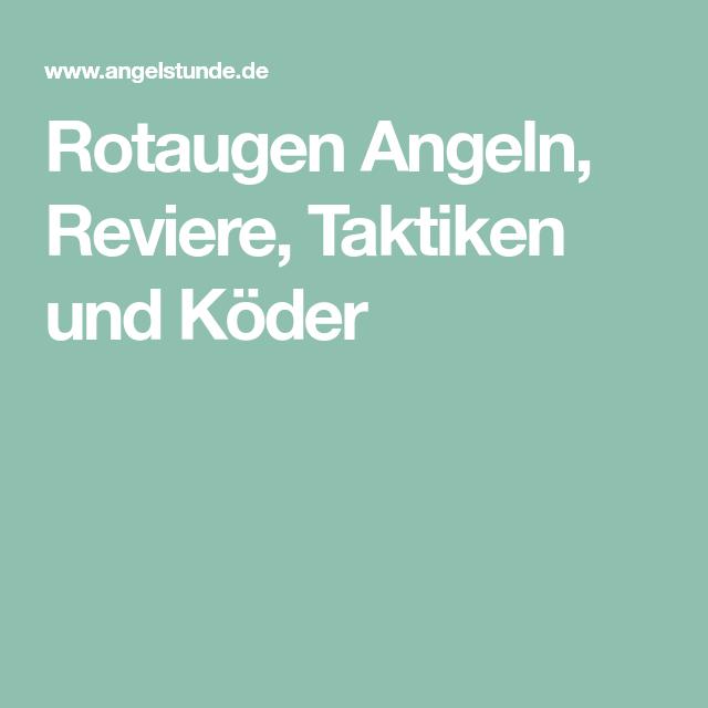 Photo of Rotaugen Angeln, Reviere, Taktiken und Köder