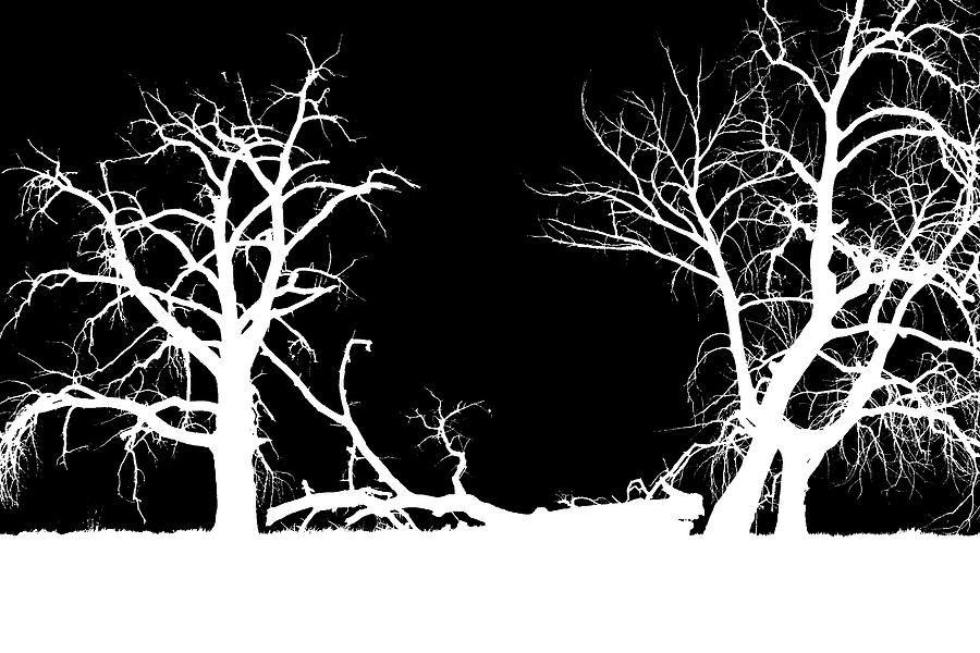 Gestalt Abstrakt Gestaltungsprinzipien Baum