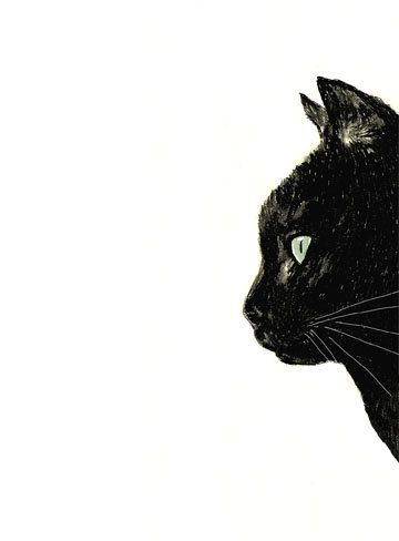 Cat Art - Black Cat Art - Black Cat with White Whiskers - Black Cat ...