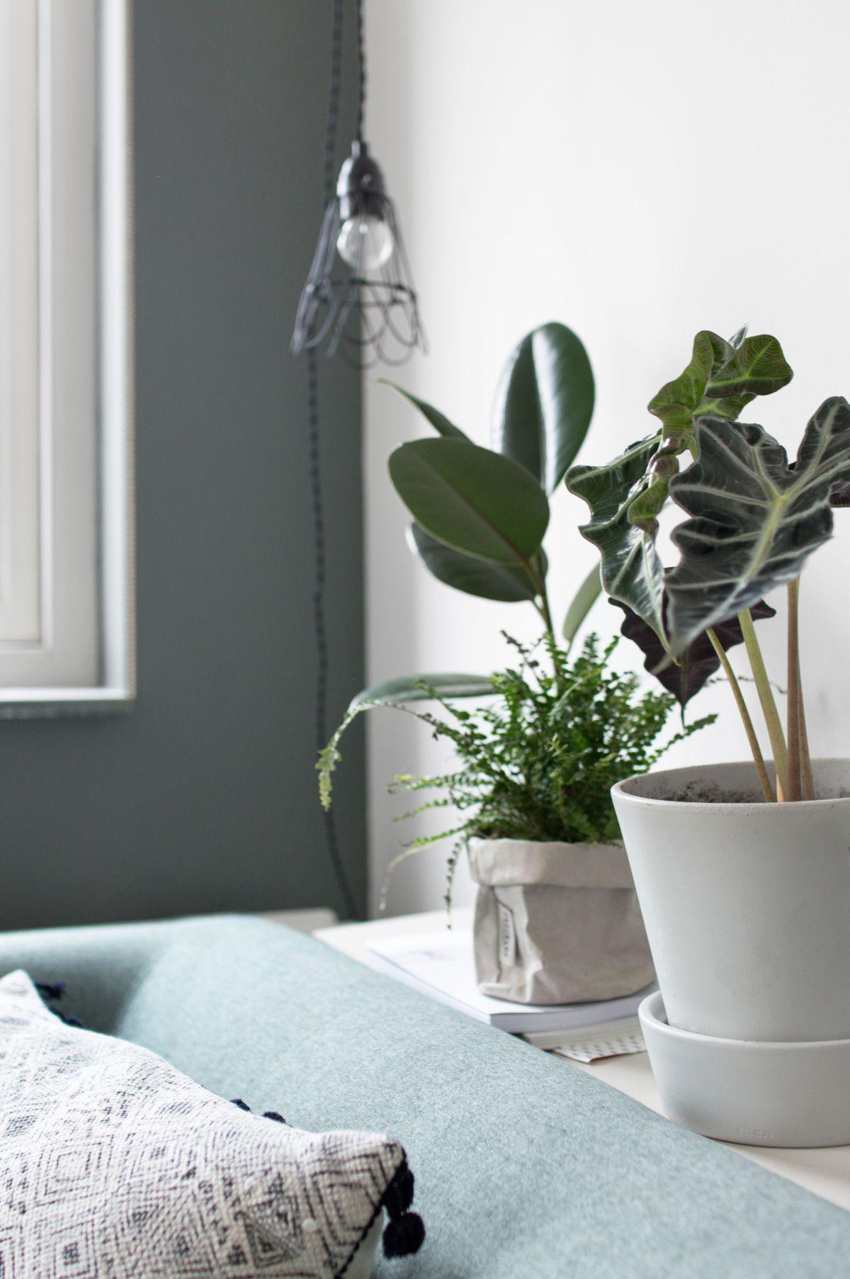 Een nieuwe bank in huis scandinavian interior pinterest