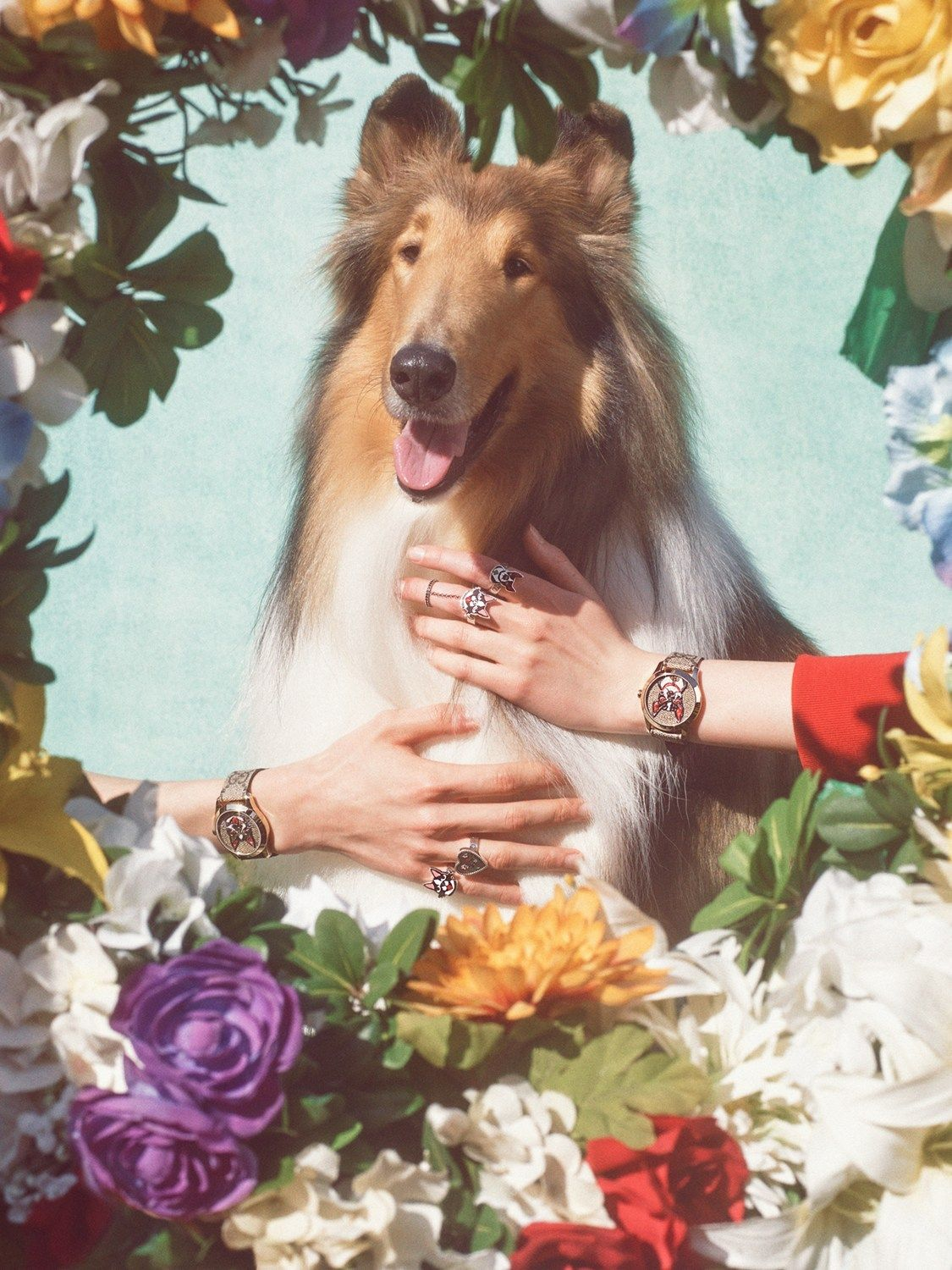 """midnightcharm """" Gucci celebrates the year of the dog"""