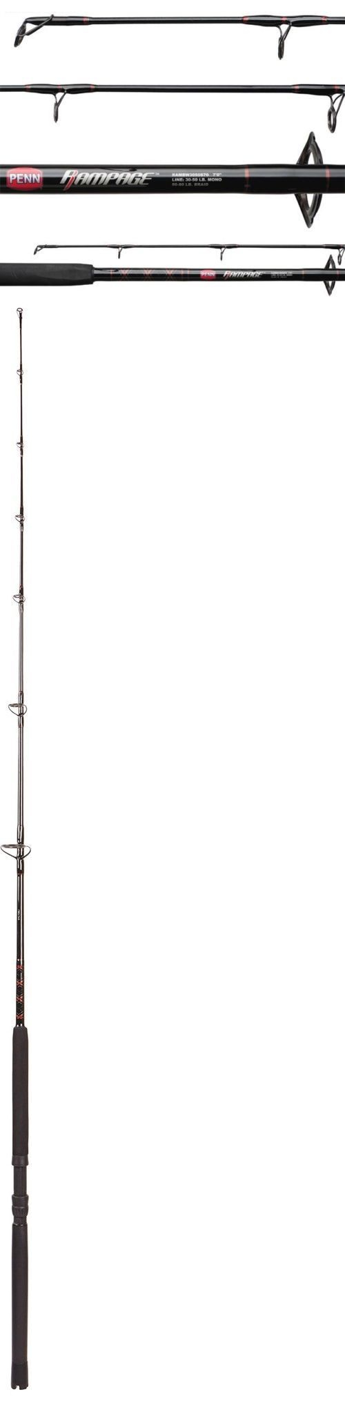Saltwater Rods 179948: Penn Rambw1530s70 Rampage Boat 7 Spinning Rod Fishing Pole Batsf1220s70 New -> BUY IT NOW ONLY: $57.87 on eBay!