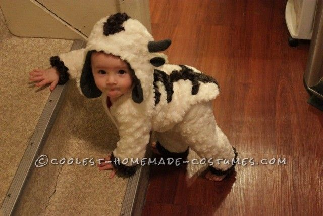 Flying Baby Appa Sky Bison Costume from Avatar The Last