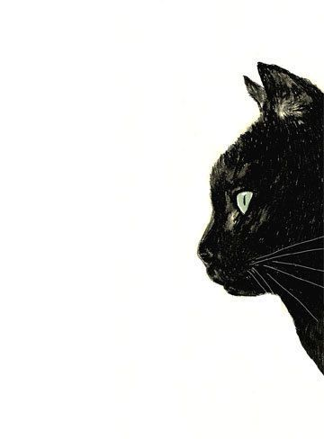 Cat Art Black Cat With White Whiskers Print Of By Corelladesign Cat