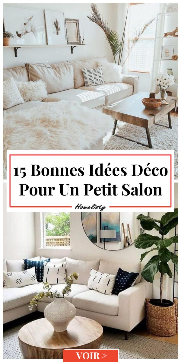 Deco Petit Salon 15 Bonnes Idees Simples Efficaces A Essayer