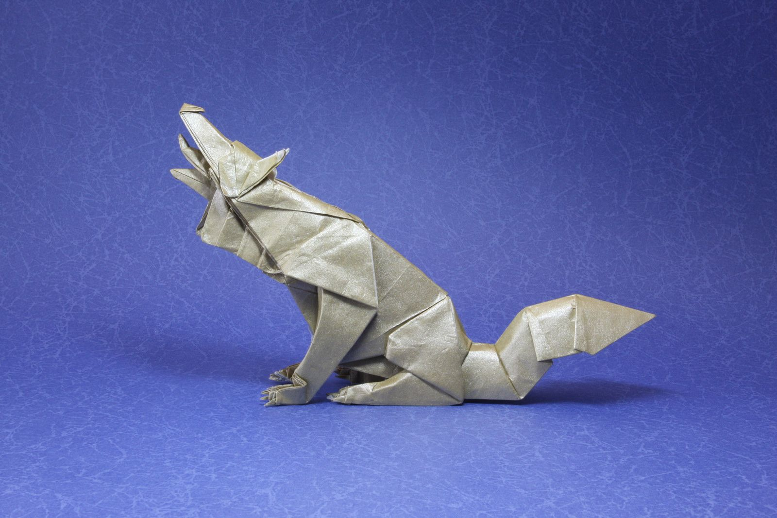 Wolf Blue By Quentin Origami