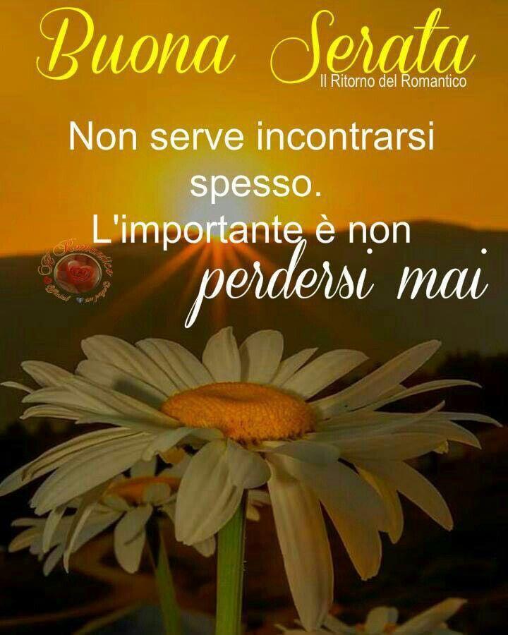 Pin di desiree dessi su buona serata amici buon for Immagini buon pomeriggio due chiacchiere