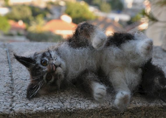 Needle felted Animal . Felted Cat . Maine Coon by darialvovsky