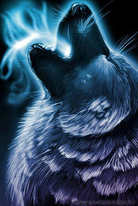 Imagen Relacionada In 2019 Wolf Artwork Wolf Painting Anime Wolf