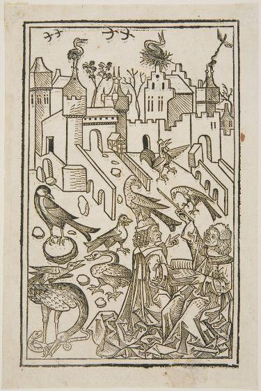 Unknown Artist Illustration From Hortus Sanitatis Mainz J Meydenbach 1491 Harvard Art Museums Fogg M Harvard Art Museum Graphic Design Illustration Art