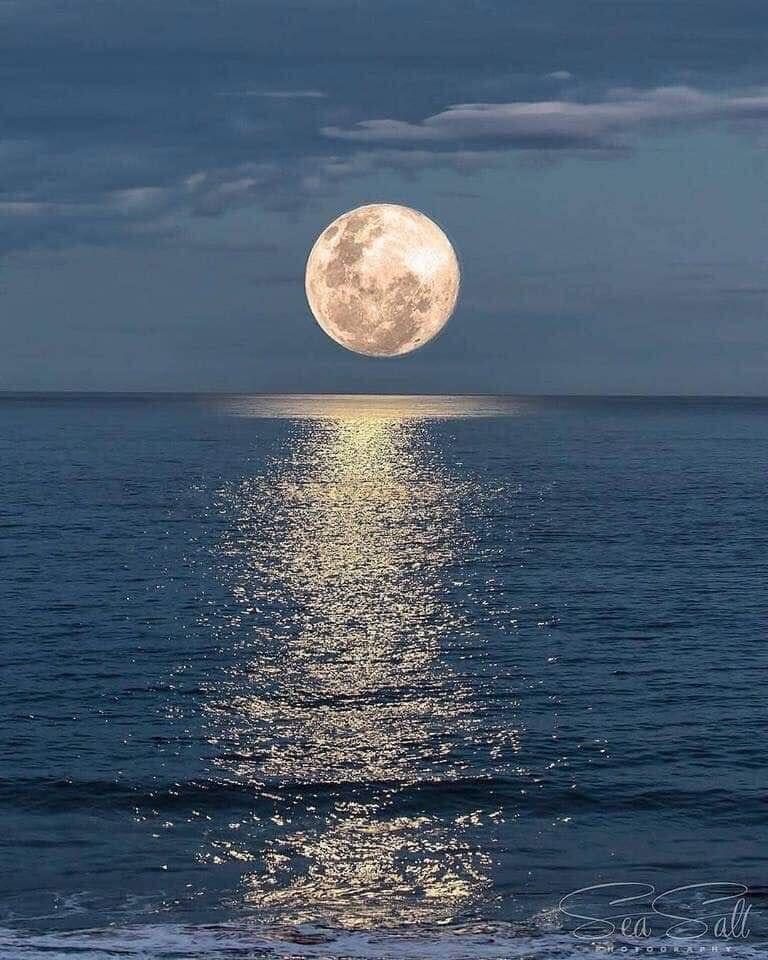 Mensaje de la Luna Llena – Completar y soltar — Naturaleza en Armonía