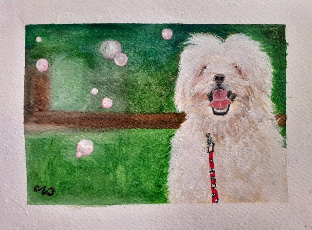 #watercolorpainting #art #artist #painting #watercolorart #watercolor #watercolour #artwork #artlovers #artlover #petlovers #wilsonspalette #wilsonspetpalette #angelwilson #lhasaapso #lhasaapsopuppy #puppylife #pet #pets #dog #dogs #puppy #lhasa #lhasalovers #lhasaapsos