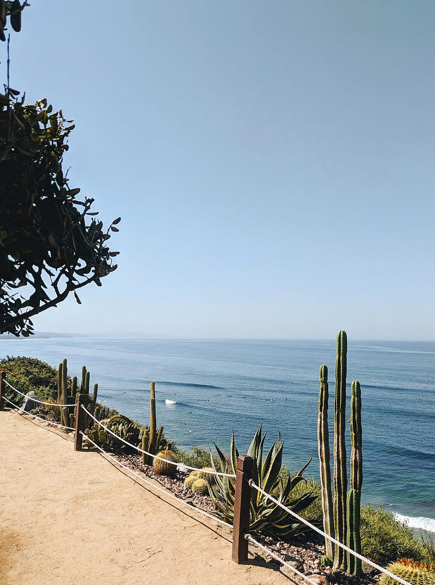 Encinitas Which Means Little Oaks In Spanish Sits In A Sweet Spot Along Historic Highway 101 95 Miles Sou In 2020 Encinitas California California Travel Curated Travel
