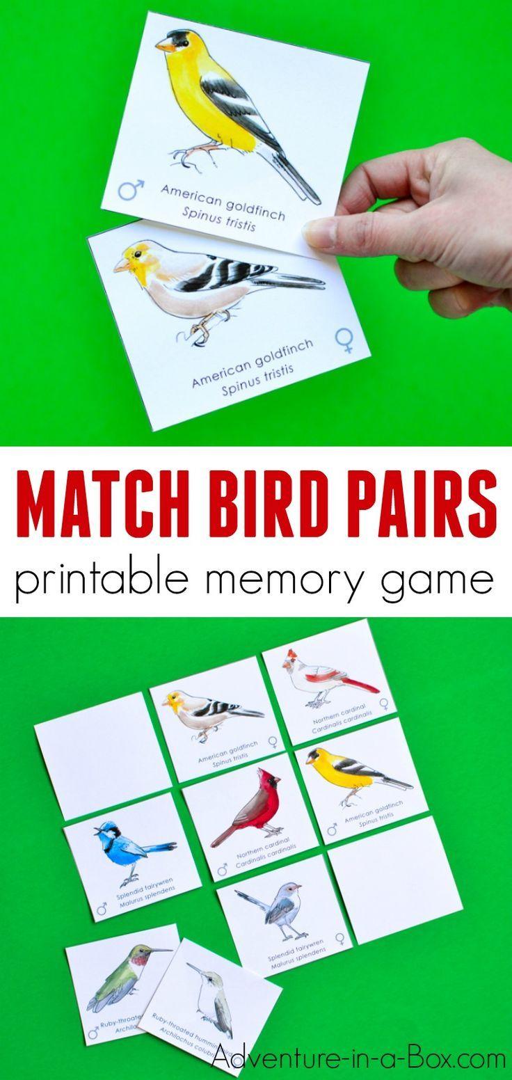 Bird Pairs Printable Memory Match Game for Kids Memory