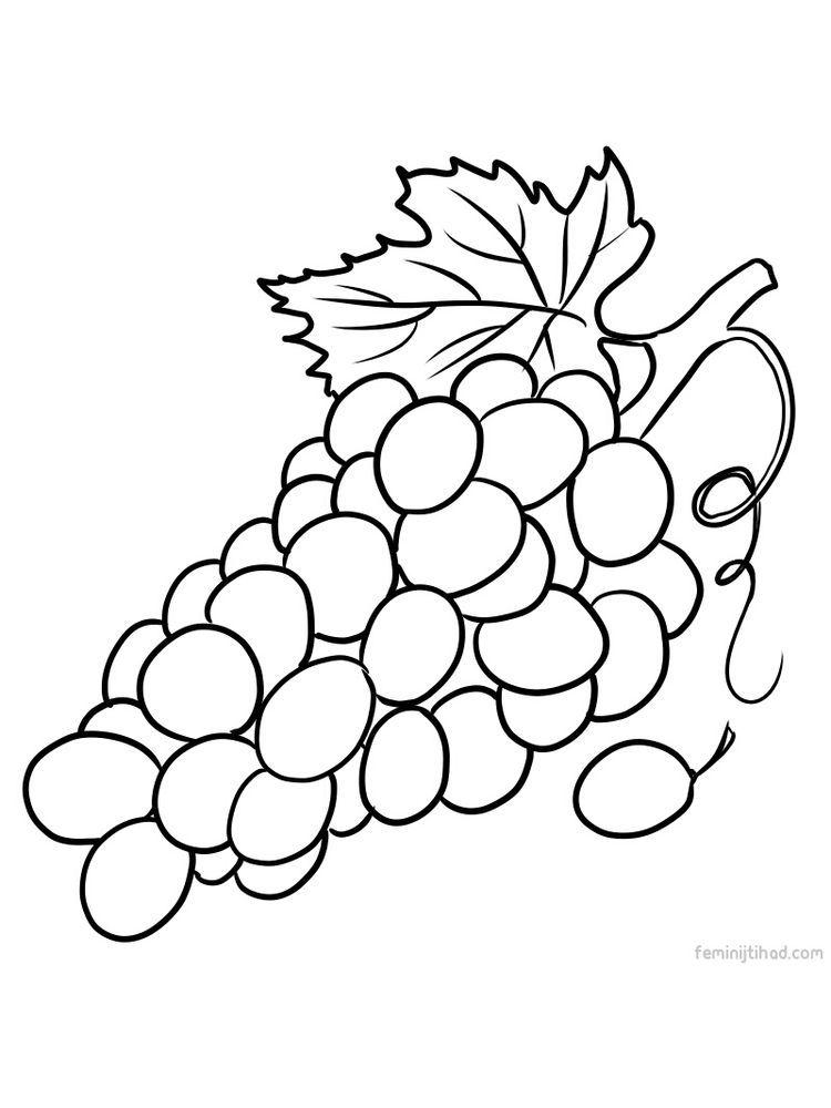 Grape Coloring Images Print