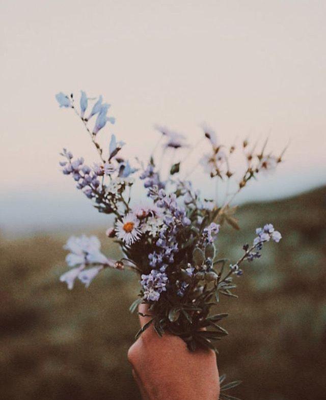❁ pin: maverette17 | ig: maverette16 ❁ #wildflowers