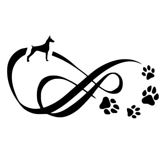 Doberman Infinity With Paw Prints Die Cut Decal Car Window Wall
