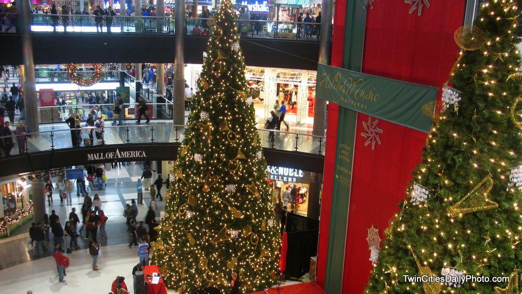 Frosted Christmas Trees Frosted Christmas Tree Christmas Mall Of America