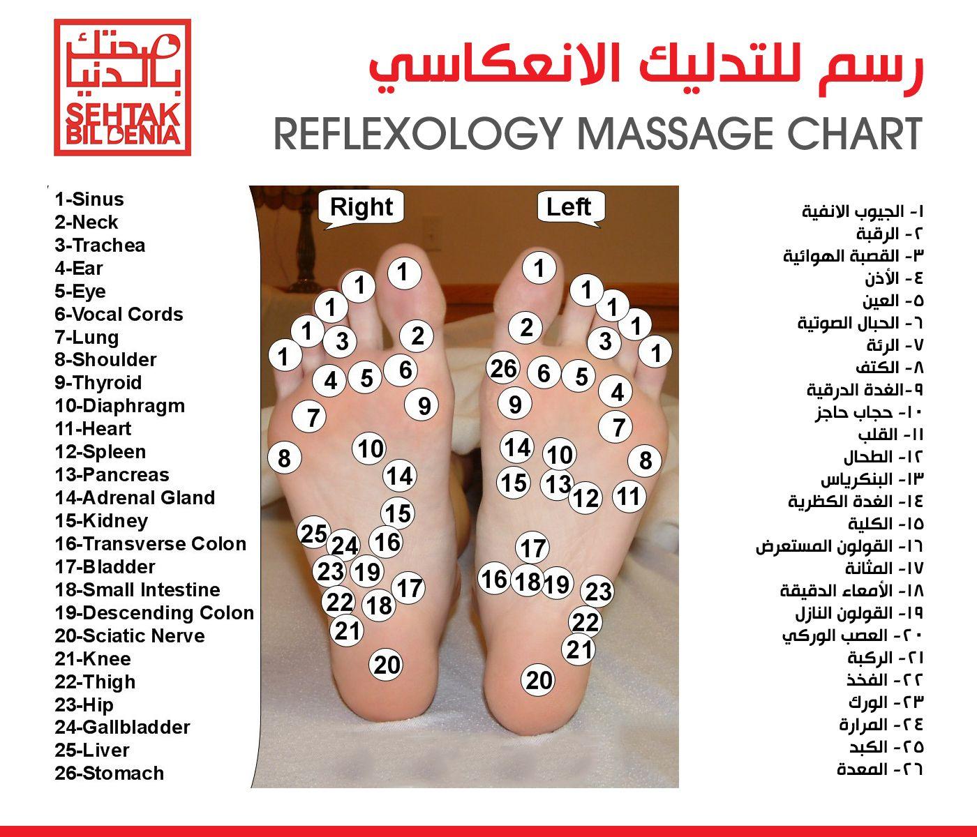 Timeline Photos Medlabs Sehtak Bil Denia Reflexology Reflexology Chart Massage Therapy