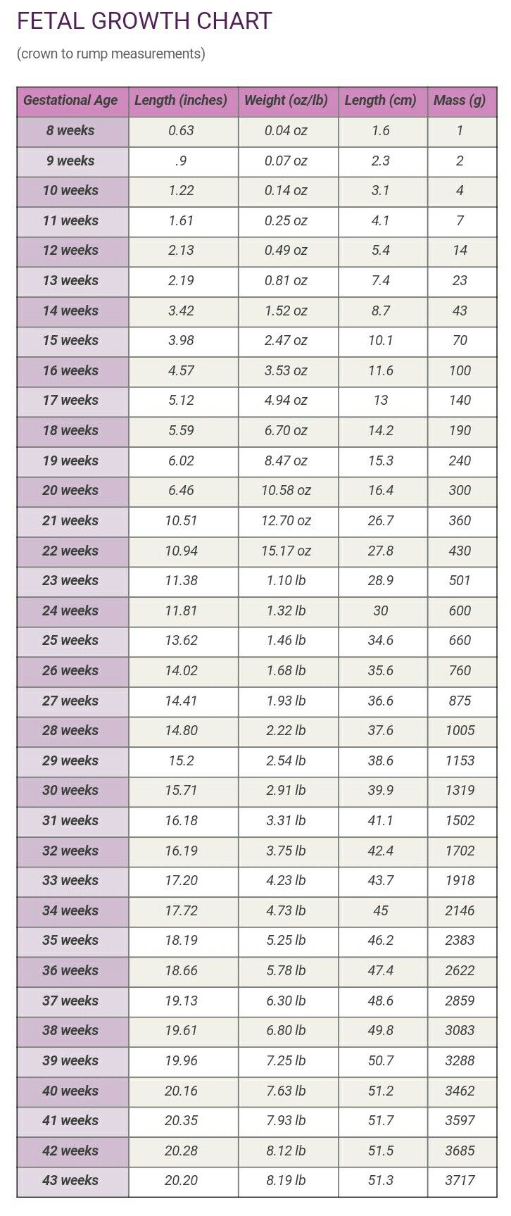 Fetal growth chart 8 43 weeks pregnancy pinterest fetal growth chart 8 43 weeks nvjuhfo Images
