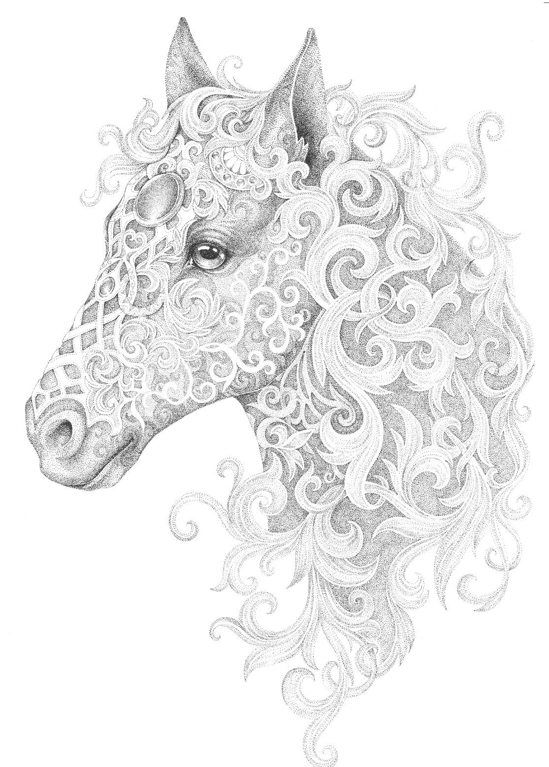 Horse adult colouring page Colouring
