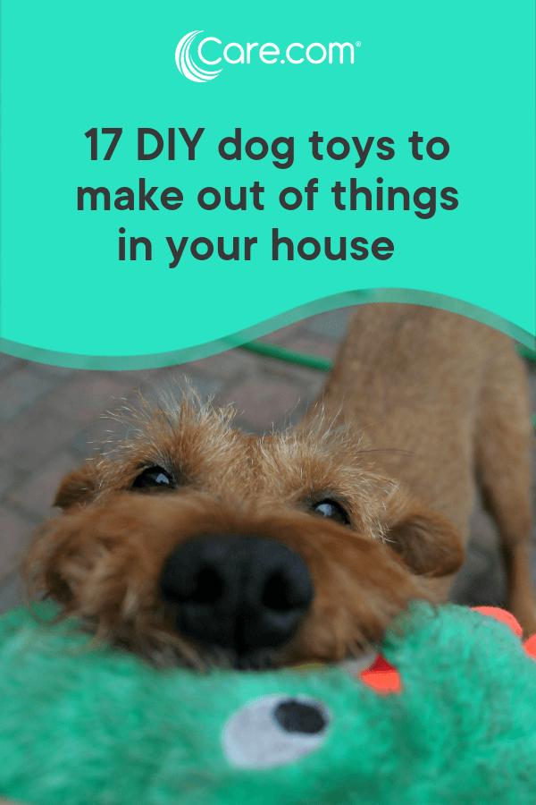 homemade dog stuff