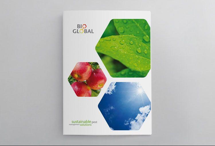 Agriculture Brochure Design web design