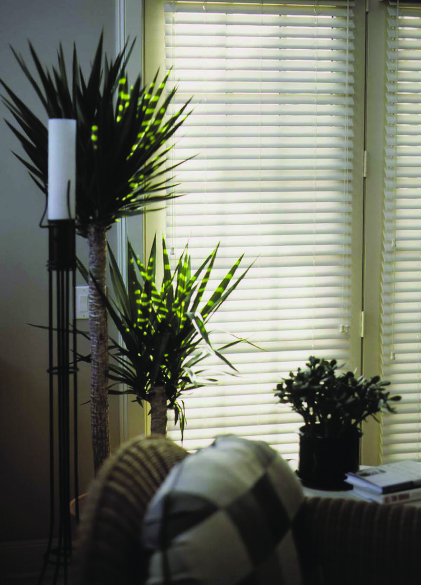Allied shades will help you choose the right shades shutters or