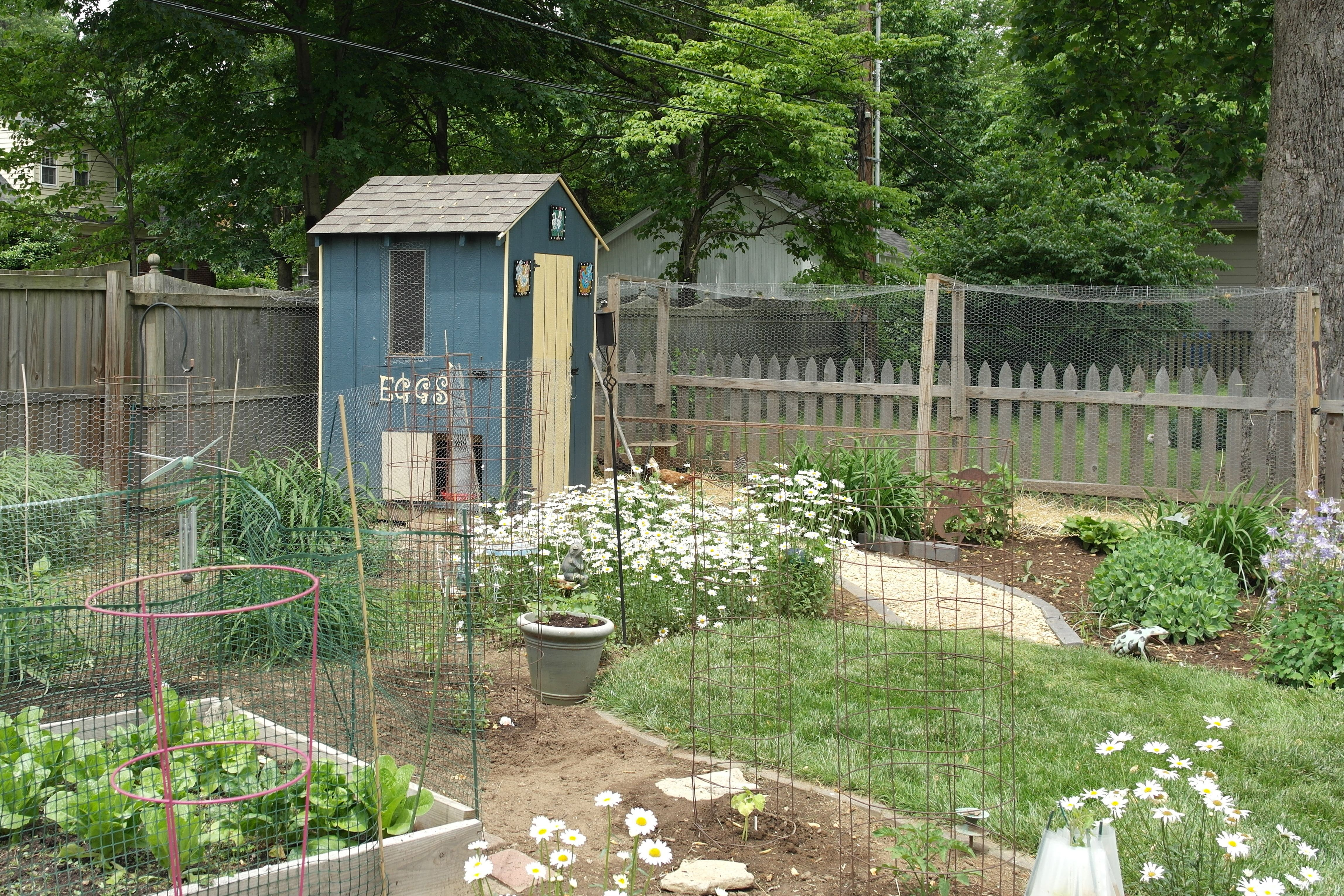 As With Backyard Poultry Housing There Is A Variety Of Different
