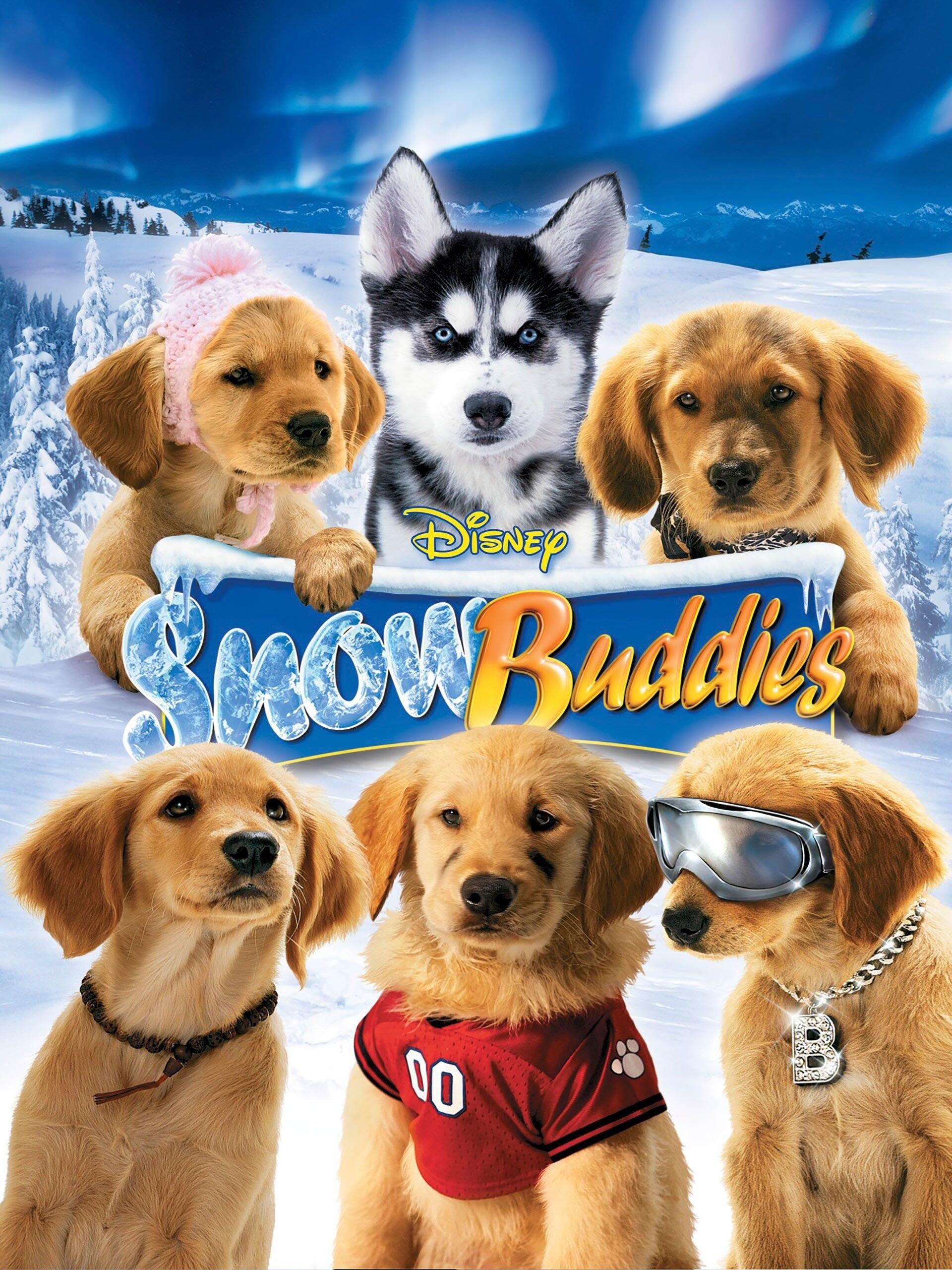 Snow Buddies 2008 Buddy Movie Dog Movies Disney Movies