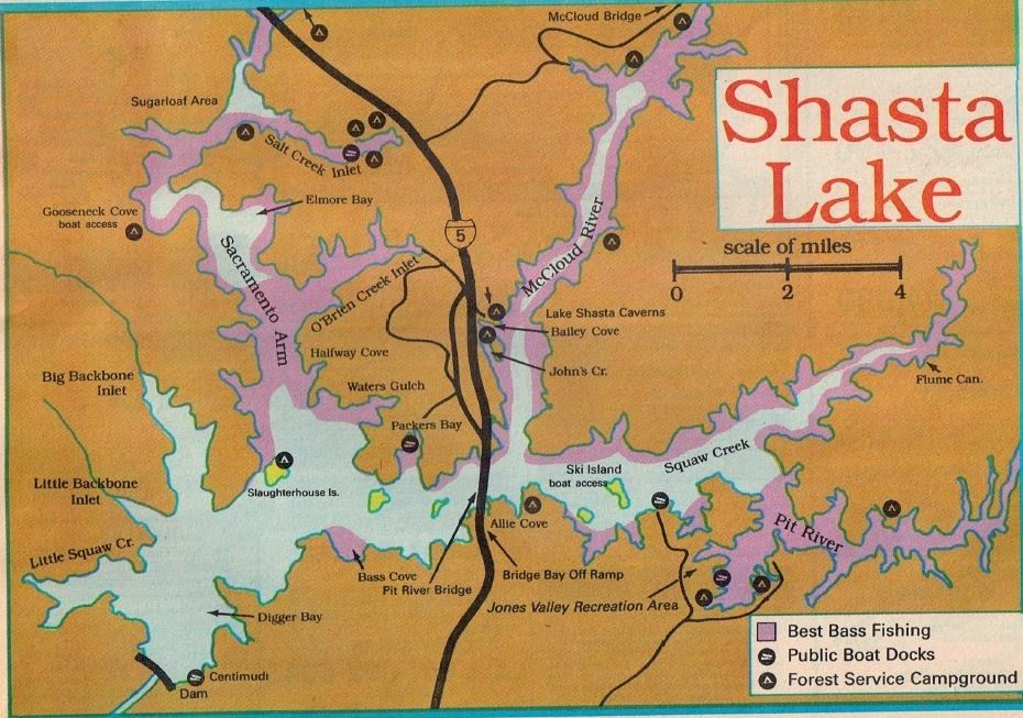 shasta lake campground map Shasta Lake Fishing Report For Bass Trout Fishing Map Best Areas shasta lake campground map