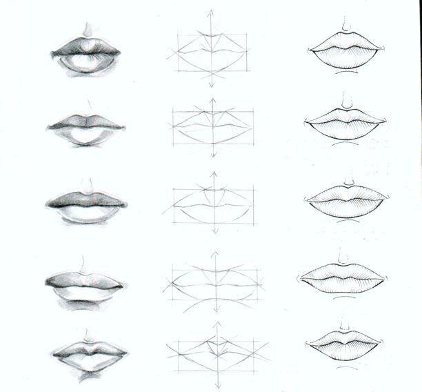 Pin By Isuusa On Decimo Lips Drawing Lip Drawing Nose Drawing