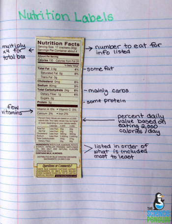 Science Process Skills Notes | Healthy, Student and Weight loss tips
