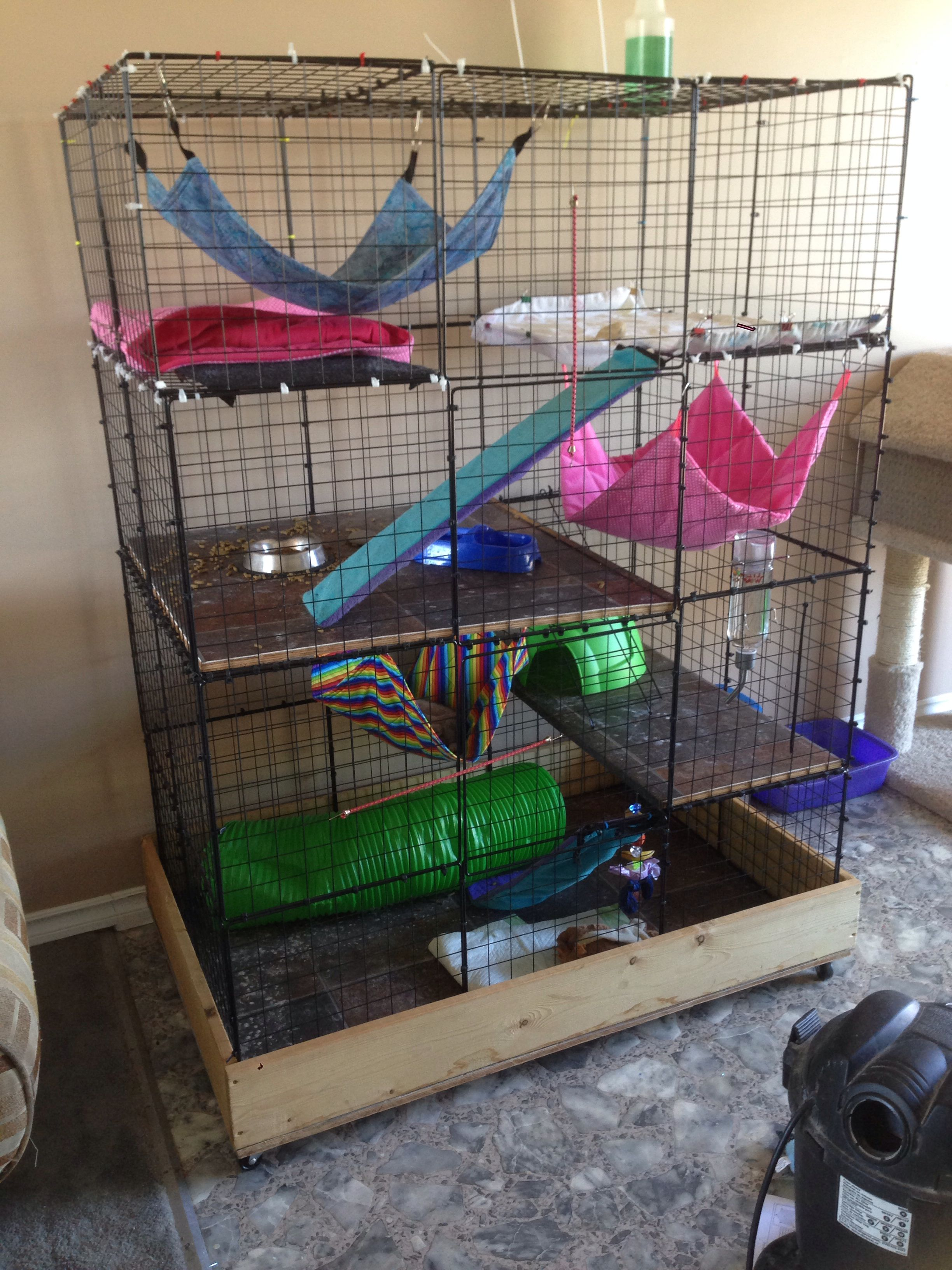 Degu cage do-it-yourself: description, device, features and reviews 36