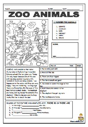 reading | Trinity grade 3 | English class, Reading, Bullet journal