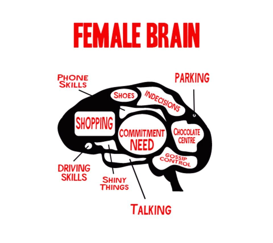 Pin by Quiet Storm on Shared Funni Pics Female, Brain, Male