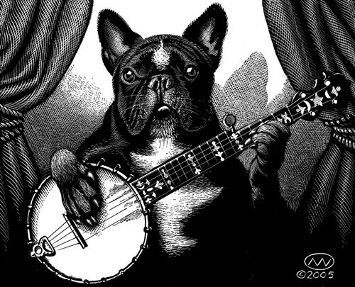 animals playing banjo - photo #8