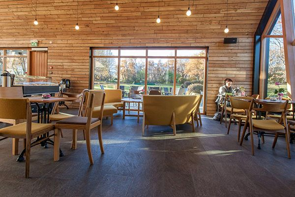 sensational coffee shop design with natural surrounding: clean and