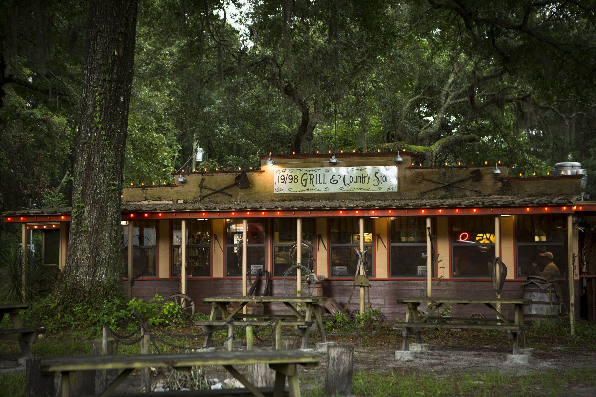 5 Things To Do Around Gainesville Fl Old Florida Gainesville Florida Gainsville Florida