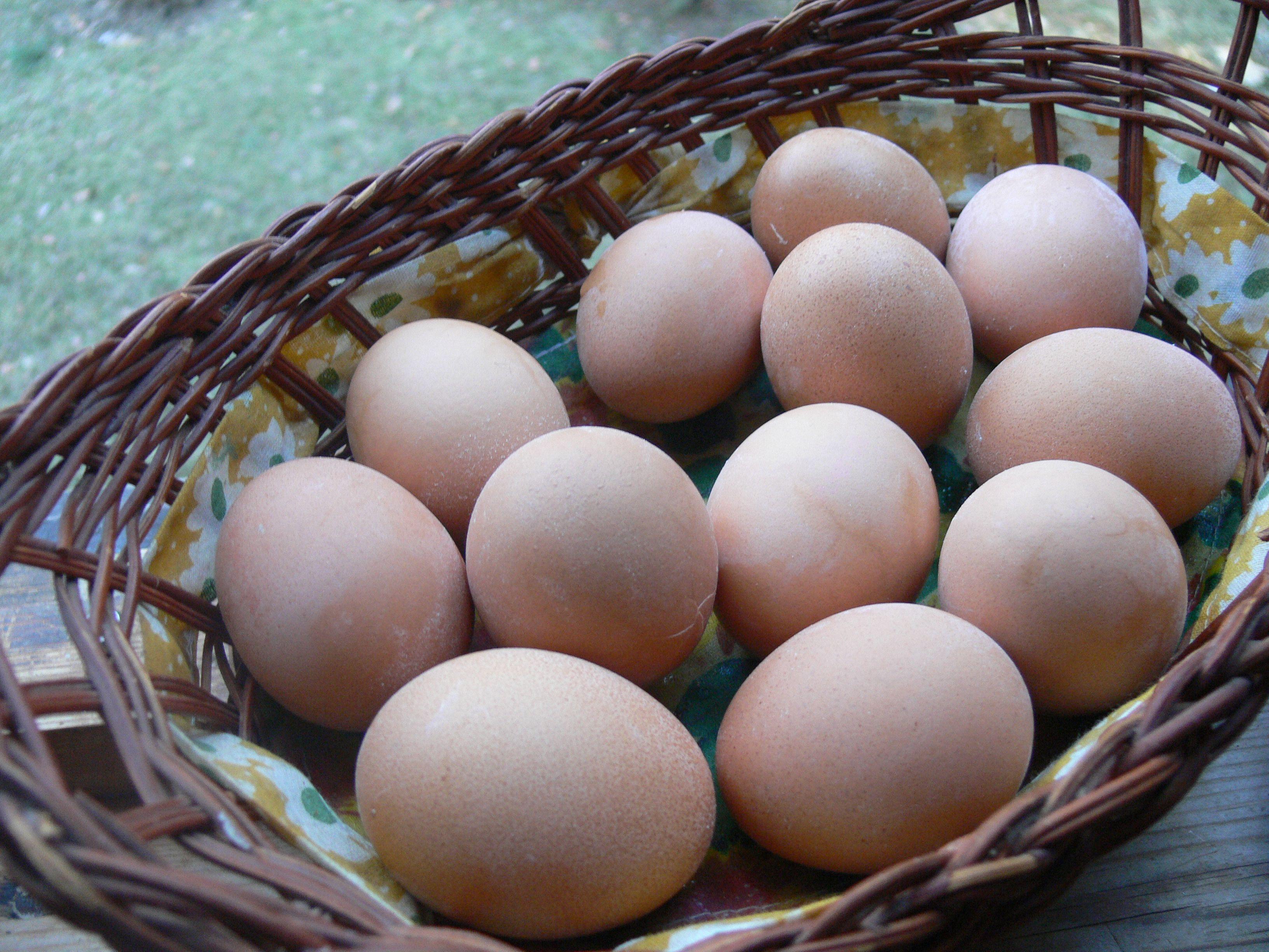 Eggs symbol of reviving life spring equinox 2012 slavic eggs symbol of reviving life spring equinox 2012 biocorpaavc