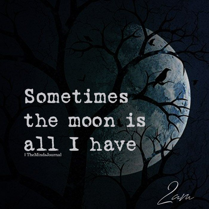 Sometimes The Moon Is All I Have