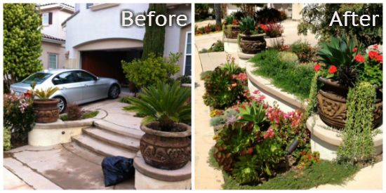 before and after waterwise landscape from armstrong garden centers landscape design and installation team armstrong