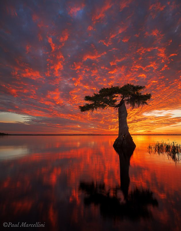 A fiery sunrise over Blue Cypress Lake in Indian River County of the Treasure Coast in Florida