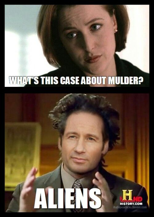 Pin By Ashley Supinski On The X Files X Files Funny X Files Funny Pictures