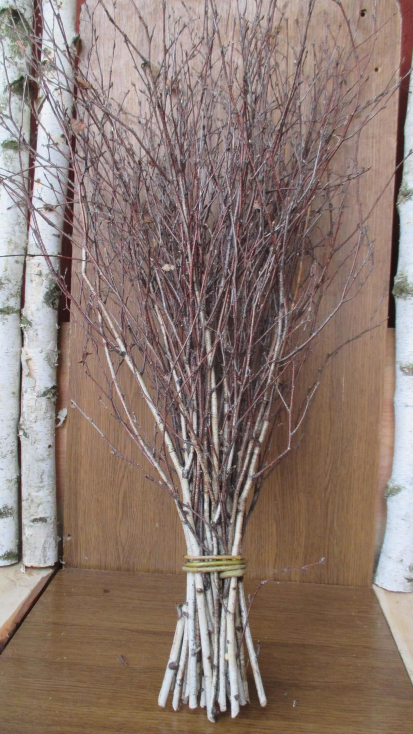 Extra Long Birch Twigs Birch Twigs Birch Tree Branches Birch Twigs Bundle Birch Broom In 2021 Birch Tree Decor Tree Branch Decor Twigs Decor