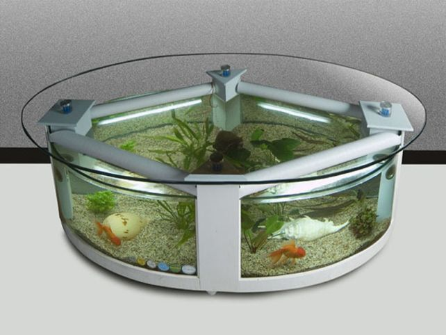 Aquarium Rental Is Available For Less Than Day Maintenance - Acrylic aquariumfish tank clear round coffee table with acrylic