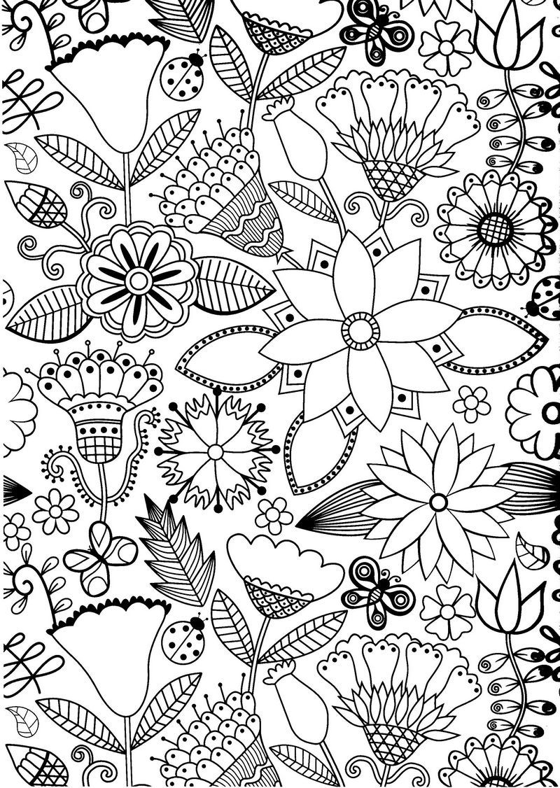 Coloriage Anti Stress Ecole.Ecole Du Bout Du Monde Coloriages Anti Stress Coloriages Ado