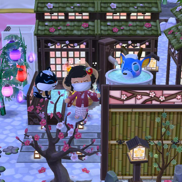 Pin on Animal Crossing Pocket Camp
