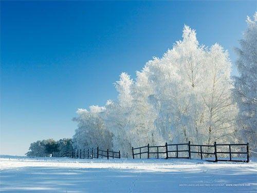 Simply a Winter Wonderland!